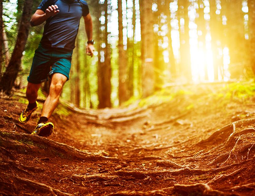 Ce trebuie sa stii inainte de prima ta cursa de alergare montana